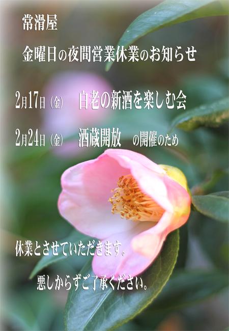 ファイル 173-1.jpg