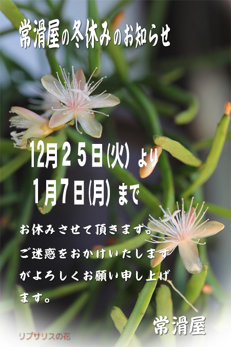 ファイル 197-1.jpg